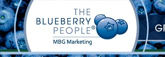 THE BLUEBERRY PEOPLE